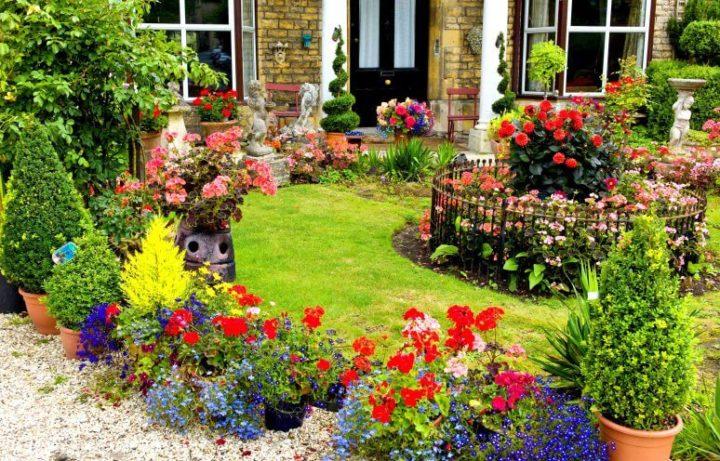 Много цветов около крыльца дома